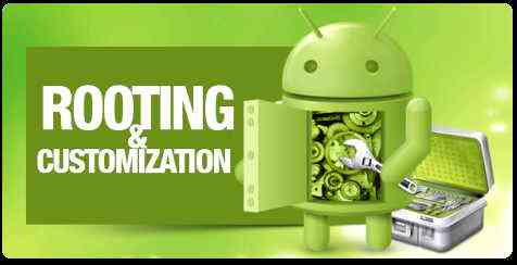 Root, oportunidades, derechos, android
